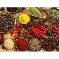 Spices Processing Consultants