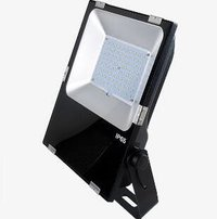 80W LED Flood Light 130Lm/W IP66 Waterproof