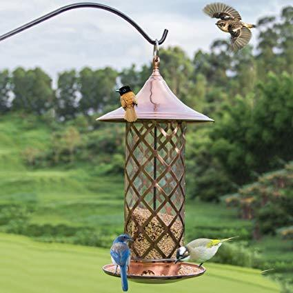 Golden Bird Feeder