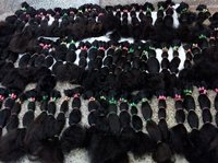Single Donor & Single Drawn Human Hair Extension Bundles