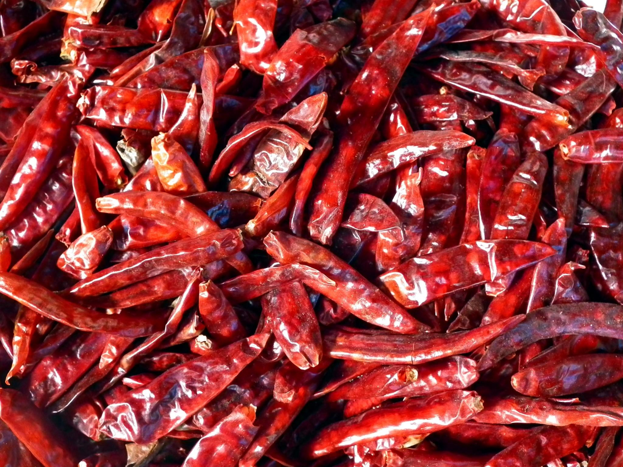Spicy Red Chilli