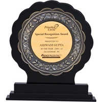AW 10 Wooden Trophy