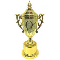 AW T5 Corporate Trophy