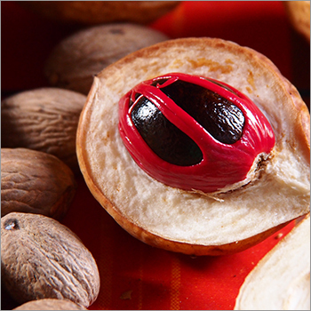 Nutmeg Extract Oil