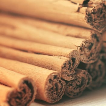 Powder Natural Flavour Cinnamon Extract