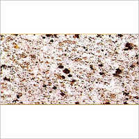 White Galaxy Multicolor Granite Slab