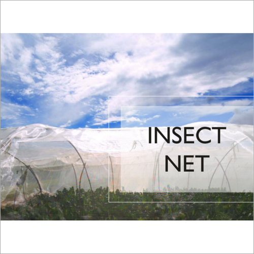 Insect Net