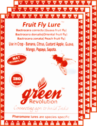 Guava Fruit Fly Lure