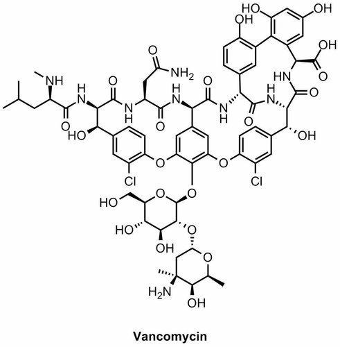 Vancomycin Assay Testing Service
