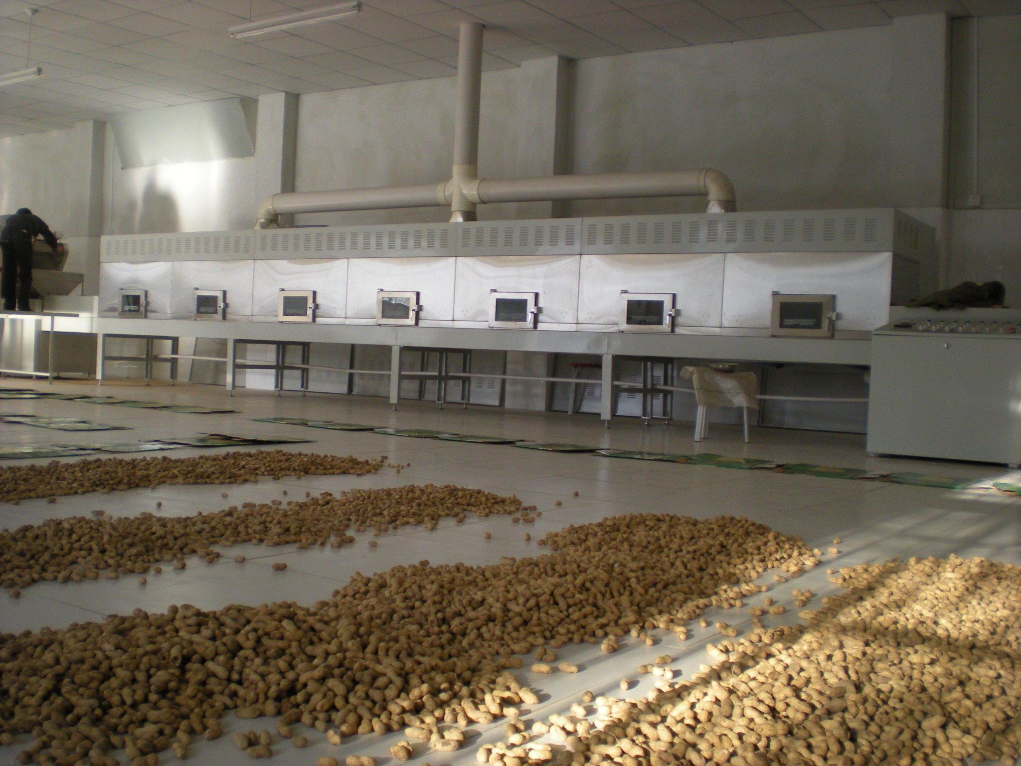 Tunnel Cashew Nut Roasting Machine