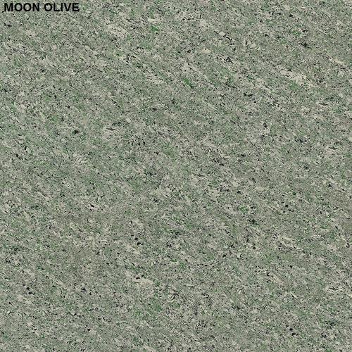 MOON OLIVE