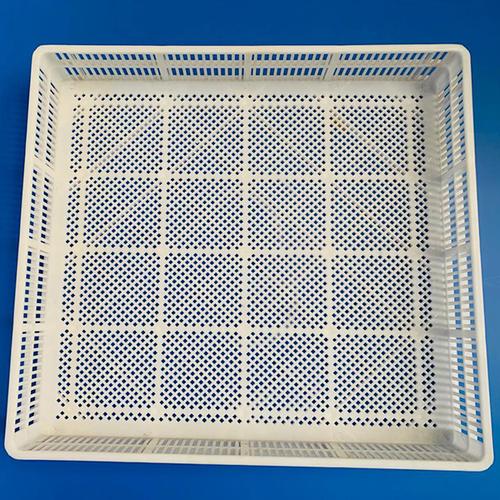 200 Eggs Hatcher Basket