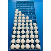 Egg Setting Tray