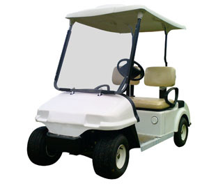 2 Seater Passenger Buggies