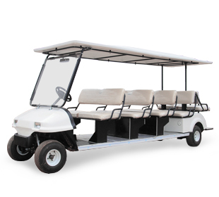 14  Seaters Passenger Buggies