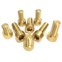 Round Brass Bolt With Allen Punch