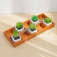 Designer Wooden Planters