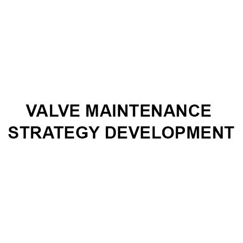 Valve Maintenance Strategy Development