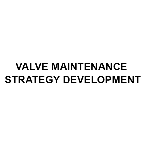 Valve Maintenance Strategy Development