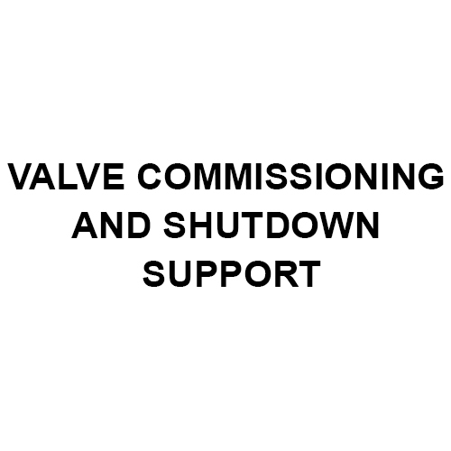 Valve Commissioning And Shutdown Support