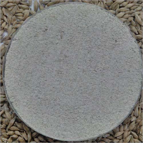 Diastatic Malt Flour