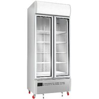 GMP Freezer- Double Door (Glass)