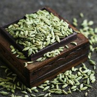 Fennel Seeds from Kinal