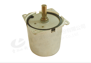 60SM60 Micro Motor