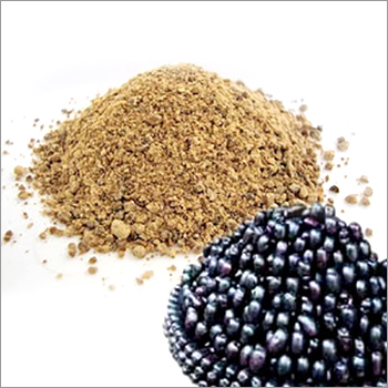 Jamun Seeds Powder