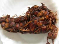 Best Quality Indian Tamarind