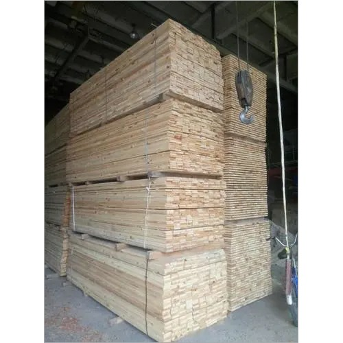 Timber Importer in India