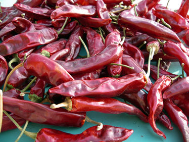 Red Chilli From Kinal