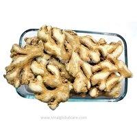 2019 Hot Selling Dry Ginger