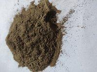 Freeze Dried Noni Powder