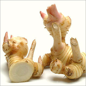 Galangal Root