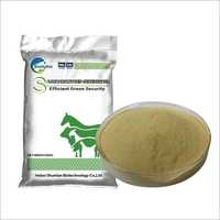 Saccharomyces Cerevisiae Powder