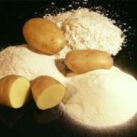 Dehydrated Potato Powder