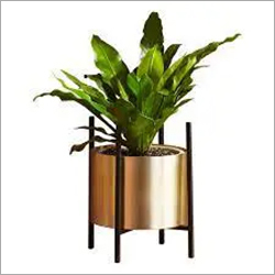 Brass Planter Set of 2