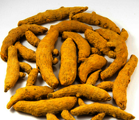 Best Quality Turmeric Finger ready for Export