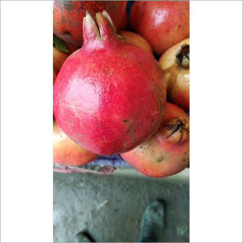 Fresh Red Pomegranate