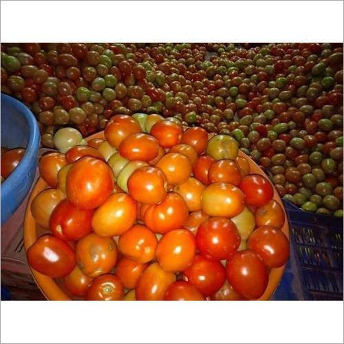 Organic Fresh Healthy Tomato