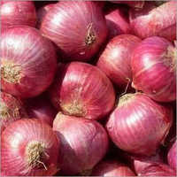 Organic Fresh Red Onion