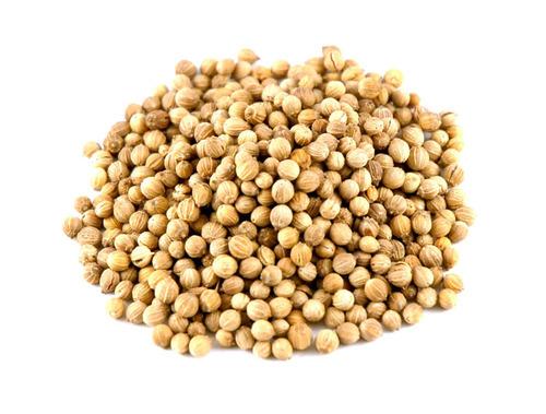 Premium Grade Coriander Seeds