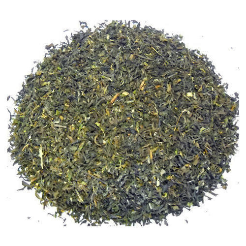 Orthodox Green Tea