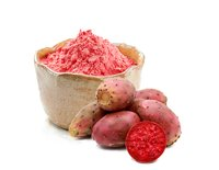Spray Dried Prickly Pear Fruit  Powder