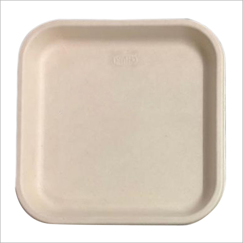 11 Inch Bagasse Disposable Plate
