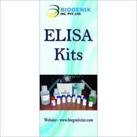 Research Elisa Kits