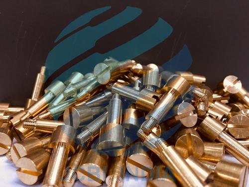 EWC Brass Screw