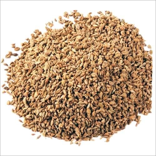 Apium Graveolens Extract