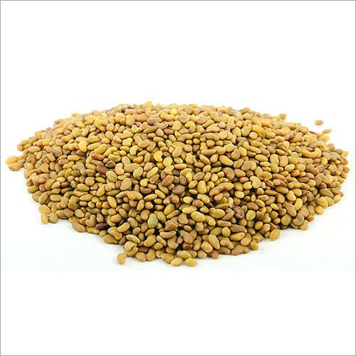 Alfalfa Seeds Extract